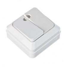 Выключатель двухклавишный с подсветкой белый, накладной 10А, 250В, пластик ABS Simple FORZA